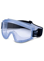 ZN11 PANORAMA NORD safety goggles (PC) (21147), clear lens